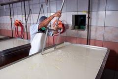 De fabrieksarbeider van de kaas het produceren Royalty-vrije Stock Afbeelding