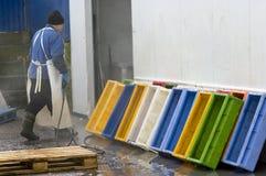 De fabrieksarbeider van vissen Stock Foto's