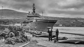De Faeröer royalty-vrije stock afbeeldingen