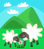 De familie die van schapen in een groene weide op een achtergrond van bergen en blauwe hemel met wolken vectorillustratie lopen Royalty-vrije Stock Afbeelding