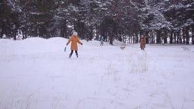 De familie en drie mensen met een hond zijn op sneeuw in de winter in park, gang in park met hond in de winter op sneeuwachtergro stock footage