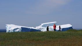 De familie loopt voorbij Ijsbergen in de Inham van de Gans Stock Fotografie