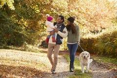 De familie met Dochter en de Hond genieten van Autumn Countryside Walk stock afbeeldingen