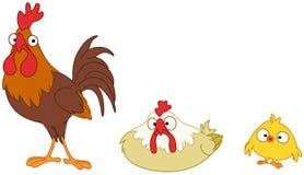 De familie van de kip Stock Fotografie