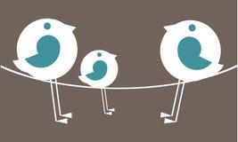 De familie van de vogel Royalty-vrije Stock Afbeelding