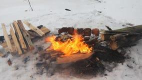 De familie van drie maakt barbecue op de grill bij groen gazon stock footage