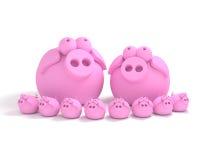 De familie van het varken Stock Foto