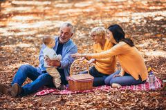 De familie van de Multlgeneratie in de herfstpark royalty-vrije stock afbeeldingen