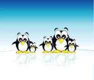 De familie van pinguïnen Stock Foto's