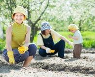 De familie zaait zaden in grond Stock Afbeeldingen