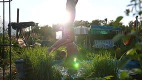 De familie zwemt in een klein meer op een hete de zomerdag De jongenssprongen in het water, leidt tot plonsen van water Tuin stock footage