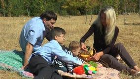 De familiepicknick in het park stock videobeelden