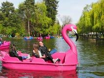 De families brengen kwaliteitstijd aan plezierboten op het meer door stock fotografie
