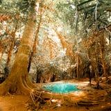 De fantasie klettert landschap met turkoois vijverwater stock foto's