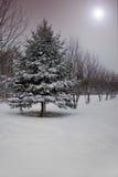 De Fantasie van de winter stock afbeelding