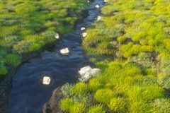 De fantasielantaarns in de rivier tussen bergen, het 3d teruggeven royalty-vrije illustratie