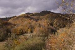 De fantastische mening van berg De open gebiedsverandering kleurt in de herfst seizoen onder de donkere hemel stock afbeeldingen