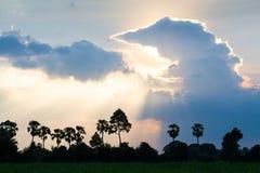 De fantastische zonsonderganghemel, wolkenvormingen, kijkt als een reuzegodzil stock afbeelding