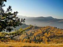 De fantastiska Carpathiansna Royaltyfri Bild