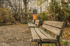 De fascinatie van foto van een de herfstseizoen met houten bank in park stock foto