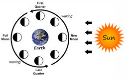 De fasen van de maan Stock Fotografie