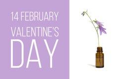 14 de febrero día del ` s de la tarjeta del día de San Valentín, tarjeta con el bellflower Fotografía de archivo libre de regalías
