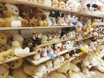 11 de febrero de 2017 suavidad del estante del fluffyUkraine del bebé con los juguetes suaves en la tienda Fotos de archivo libres de regalías