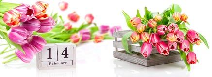 14 de febrero, tulipanes rosados al día del ` s de la tarjeta del día de San Valentín Imágenes de archivo libres de regalías