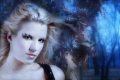 De fee van de herfst stock fotografie