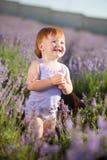 De fee van de lavendel Royalty-vrije Stock Foto's