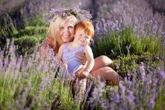 De fee van de lavendel Stock Afbeeldingen