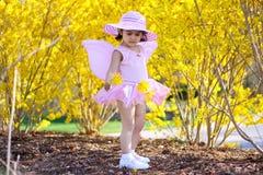 De fee van de lente Royalty-vrije Stock Fotografie