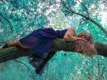 De fee van de tand Forest Fairy Rust binnen royalty-vrije stock foto