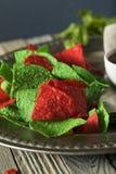 De feestelijke Spaanders van de Kerstmis Groene en Rode Tortilla Royalty-vrije Stock Foto
