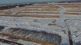 De felled bomen liggen onder de open hemel Ontbossing in Rusland Vernietiging van bossen in Siberië Het oogsten van hout stock video