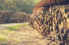 De felled logboeken van de bomen in de zaagmolen worden gestapeld royalty-vrije stock foto