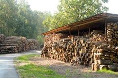 De felled logboeken van de bomen in de zaagmolen worden gestapeld royalty-vrije stock fotografie