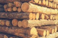De felled logboeken van de bomen in de zaagmolen worden gestapeld stock foto's