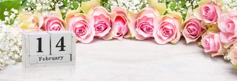 14 de fevereiro, rosas cor-de-rosa ao dia do ` s do Valentim Fotos de Stock Royalty Free