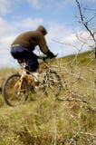 De fiets van de berg Royalty-vrije Stock Foto's