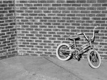 De fiets van jonge geitjes Royalty-vrije Stock Foto