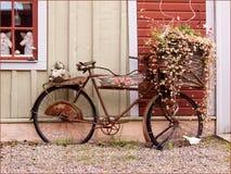 De fiets van Monice´s. Stock Afbeeldingen