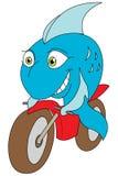 De fiets van vissen royalty-vrije illustratie