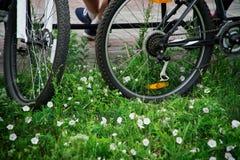 De fietsen bevinden zich in het gras, en de atletenrest op een bank in het park stock afbeeldingen