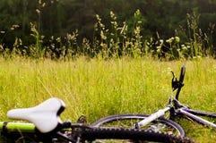 De fietsen liggen op het gras Stock Fotografie