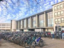 De fietsen wachten op hun passagiers De post van de fietshuur stock afbeeldingen
