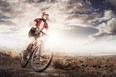 De fietser die van de bergfiets enig spoor berijden Stock Foto's