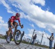 De Fietser Jurgen Roelandts - Parijs Roubaix 2016 Stock Afbeeldingen
