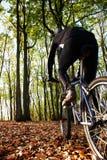 De fietser van de berg stock afbeelding