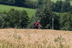 de fietsers in een afstand bekijken op de zomer zonnige dag stock foto's
